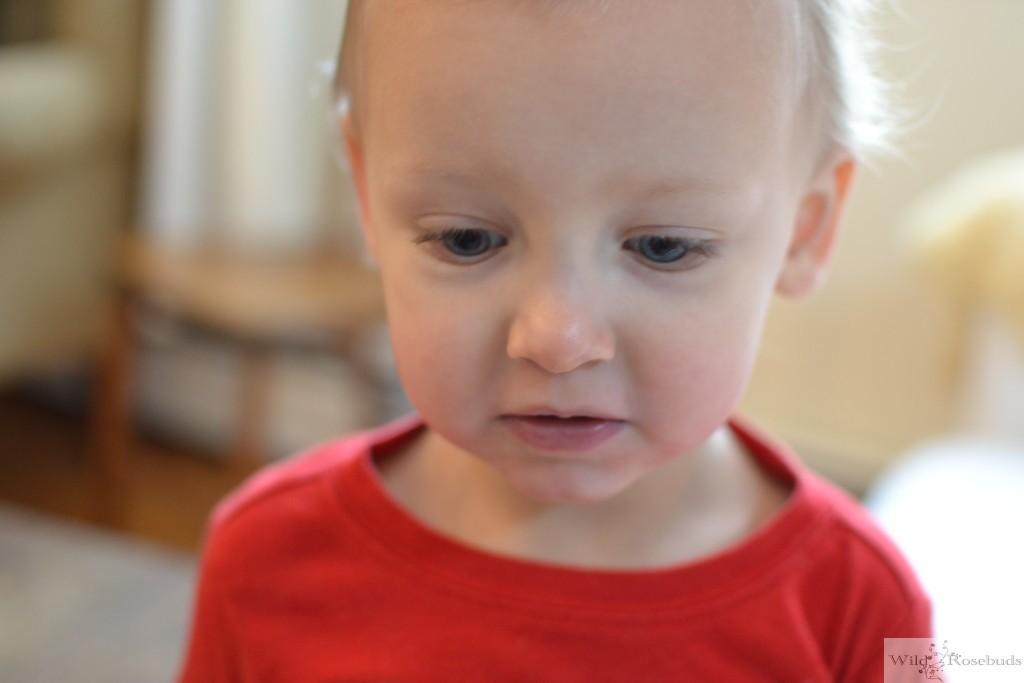 Wildrosebuds.com: Another Daycare change