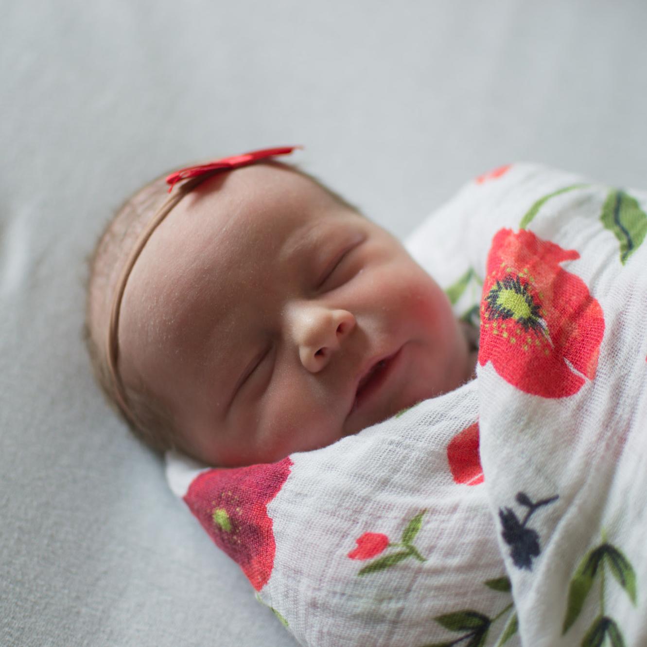 Wild Rosebuds: Poppy's Birth Story