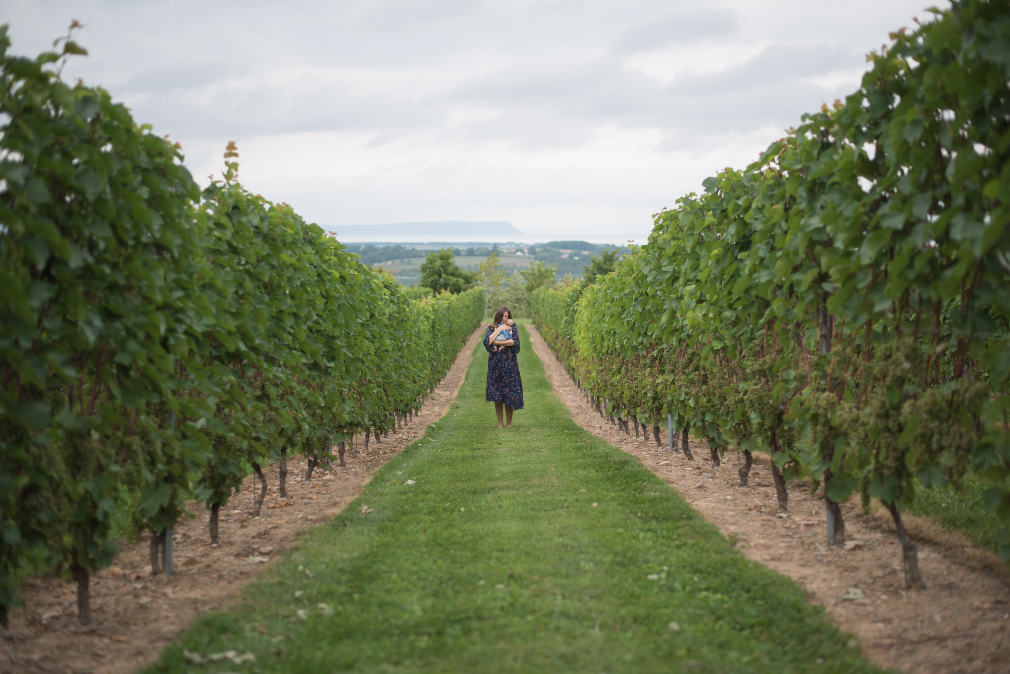 A Reset Trip To Annapolis Valley