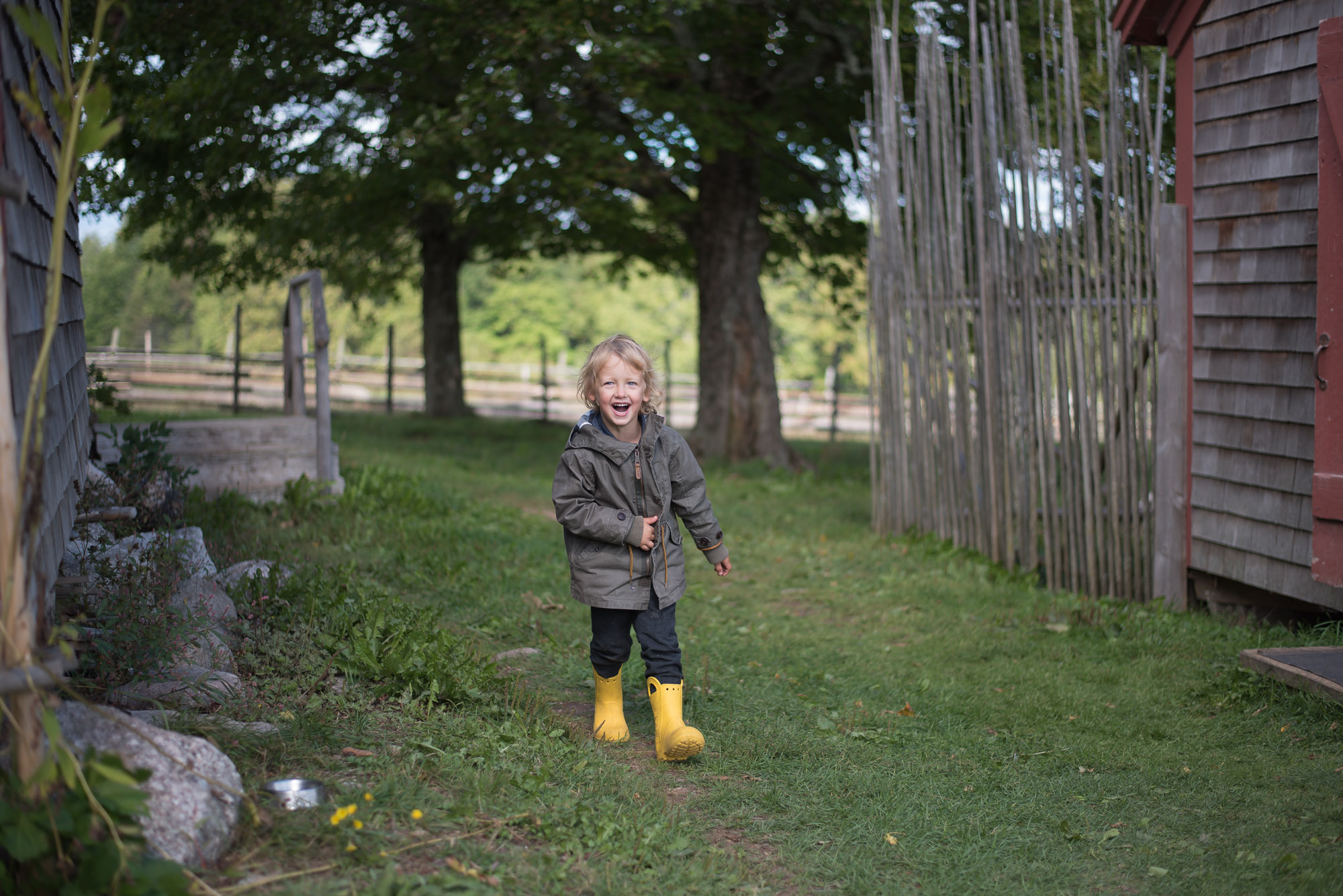 Wild Rosebuds on allowing her three year old independance to correct his irrational behaviour