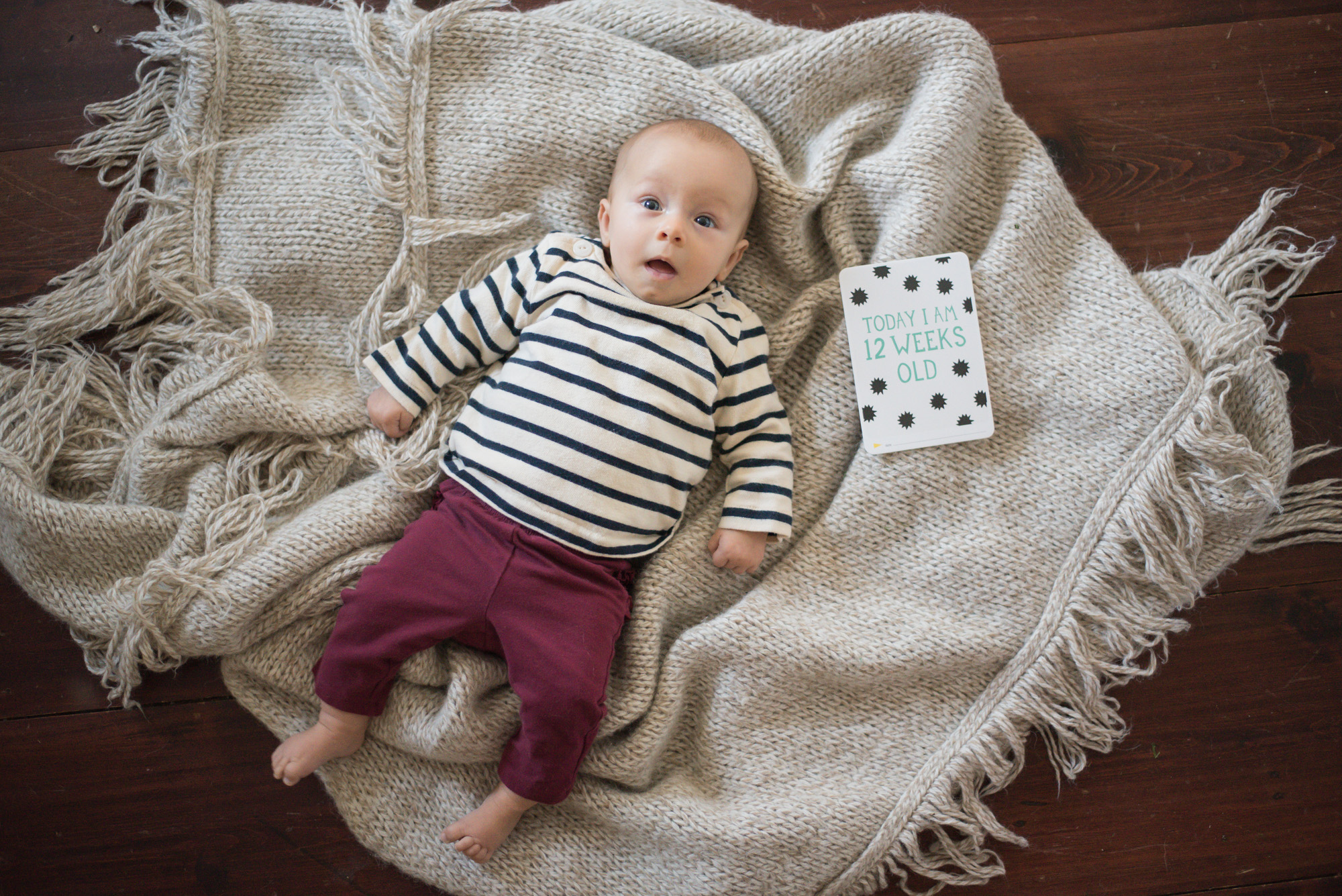 Wild Rosebuds: Using Milestones Cards to capture all your baby's first milestones