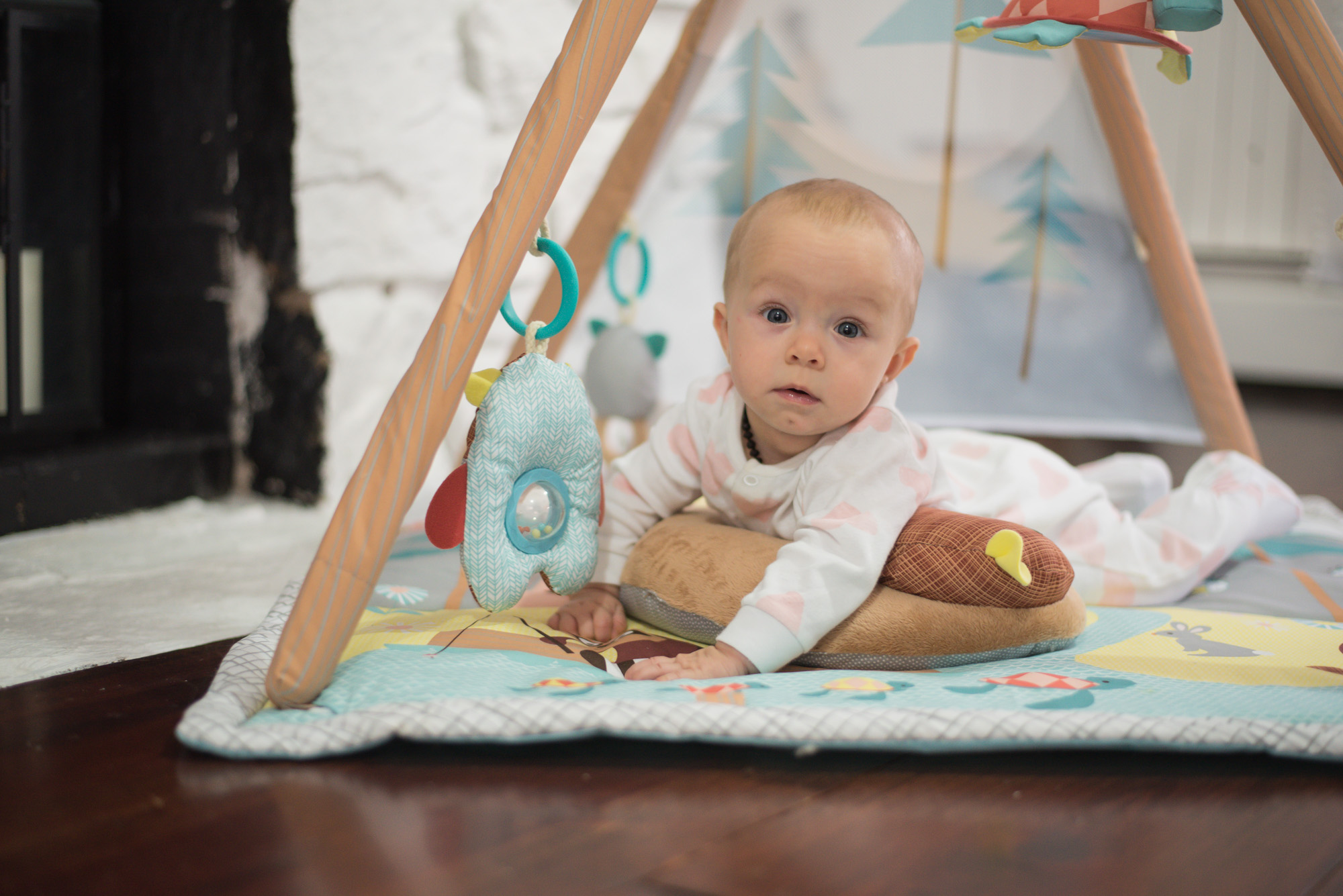 Skip hop Camping Cubs Activity gym, the perfect gift for baby;s first christmas