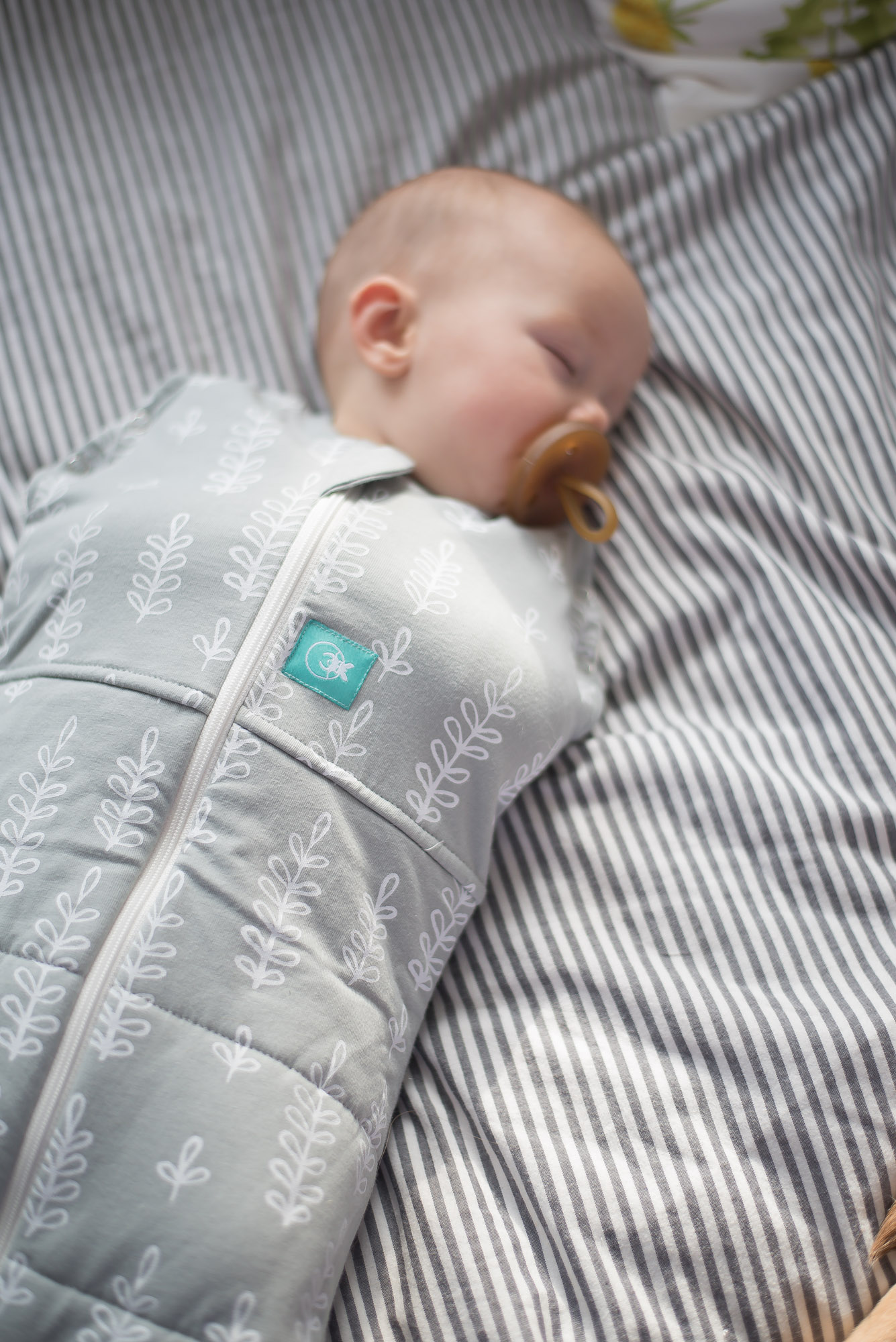 Wild Rosebuds: Keeping your baby warm and swaddled through the Winter with ergoPouch