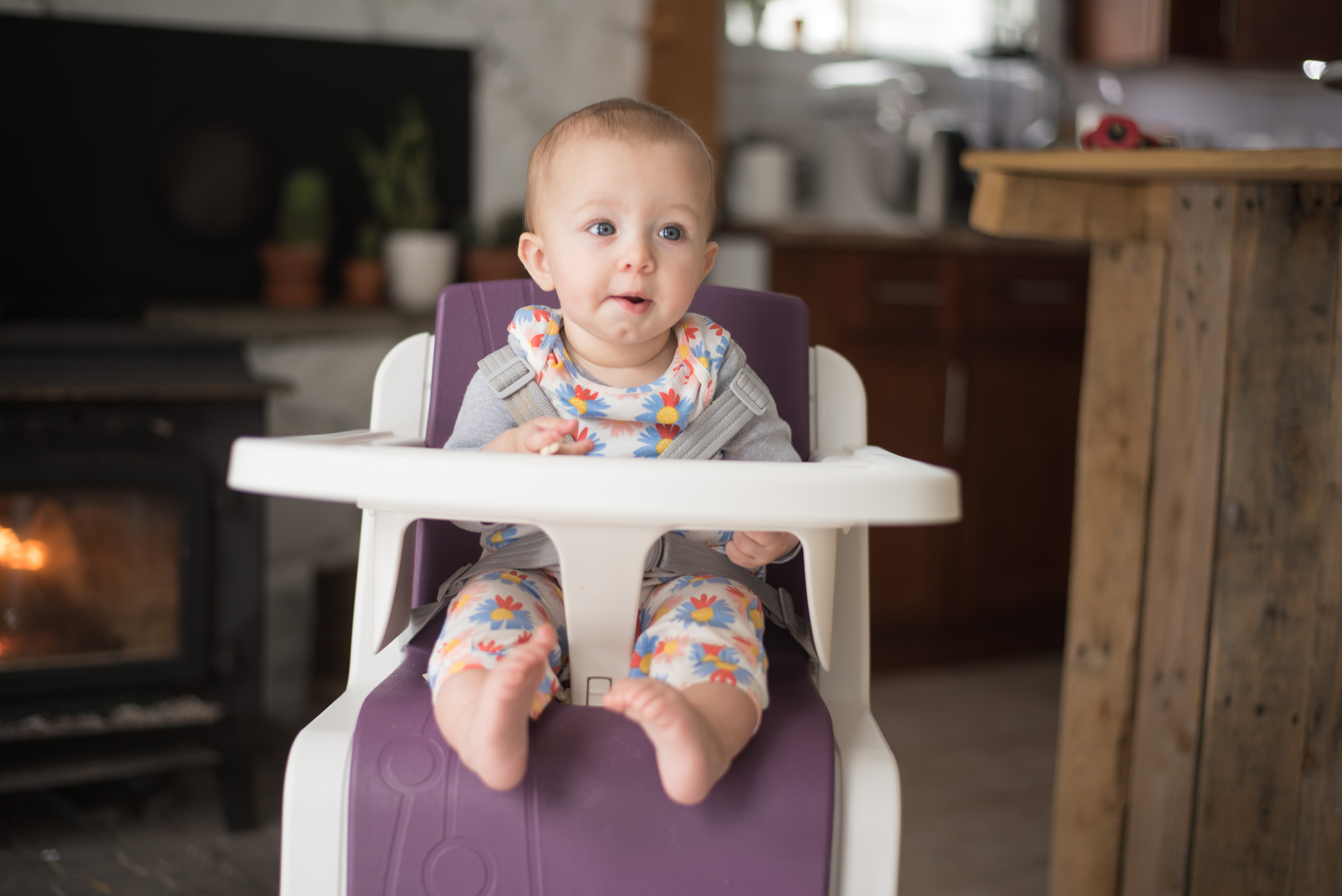 Wild Rosebuds on how to get your bby to eat solids and a review on the Nuna Zaaz