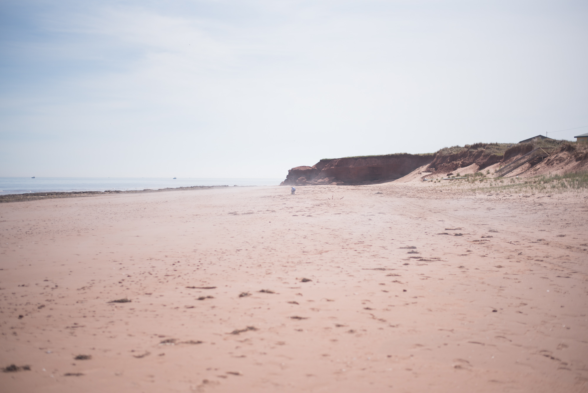 Wild Rosebuds: Road trip to PEI with Ford Canada for the 150th birthday of Canada