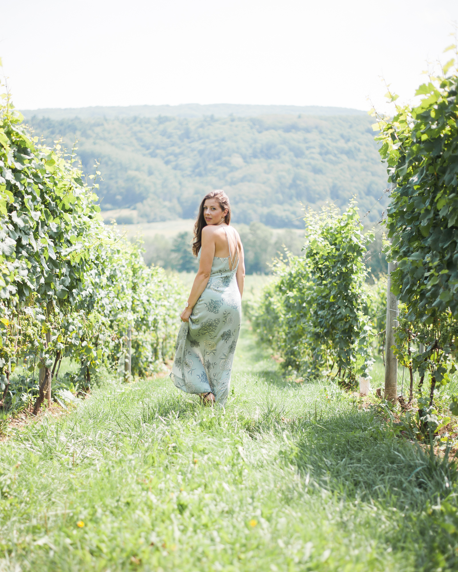 Wild Rosebuds: Summer Road Trip To Annapolis Valley Wineries