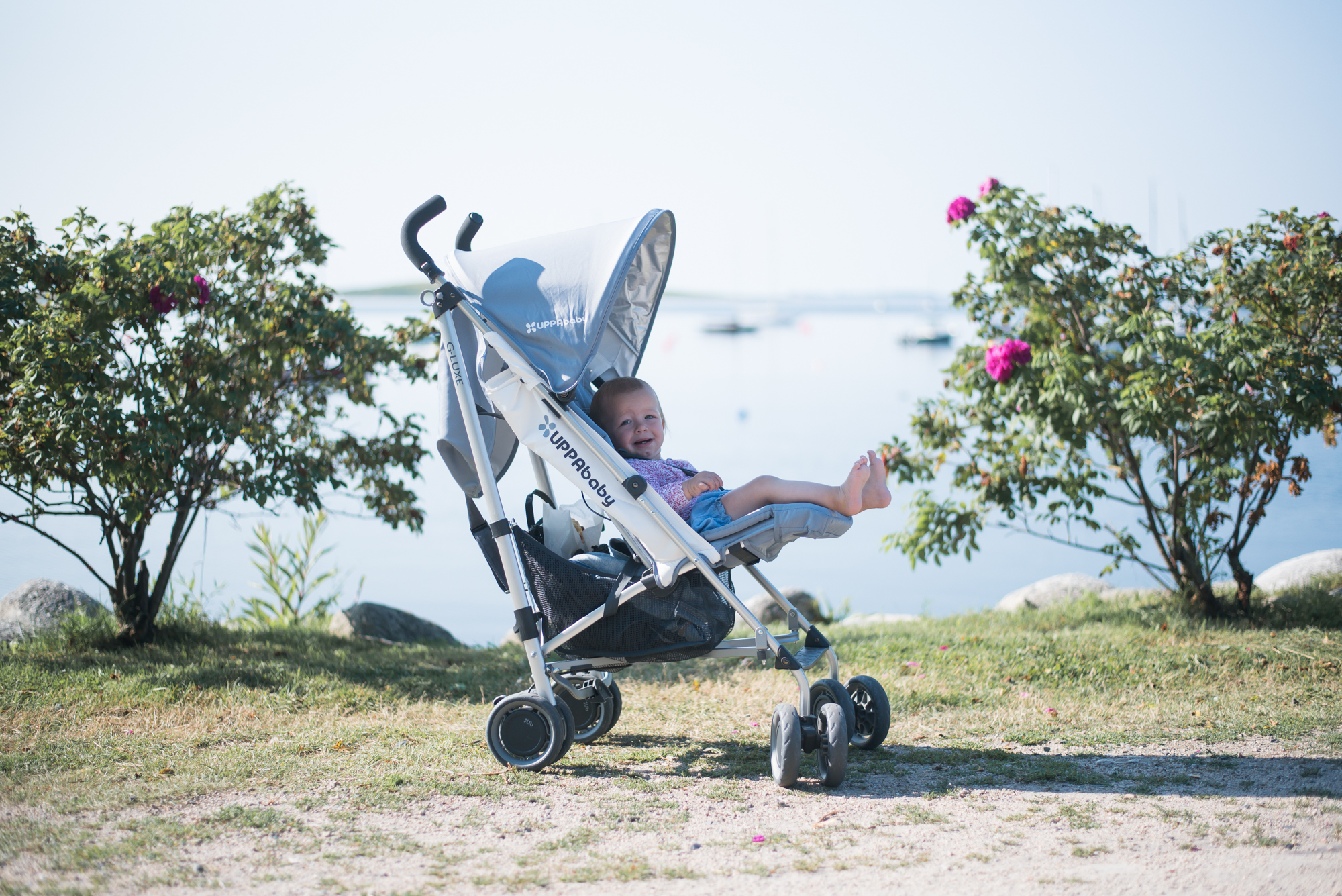 Wild Rosebuds reviews the UPPAbaby G-LUXE travel stroller