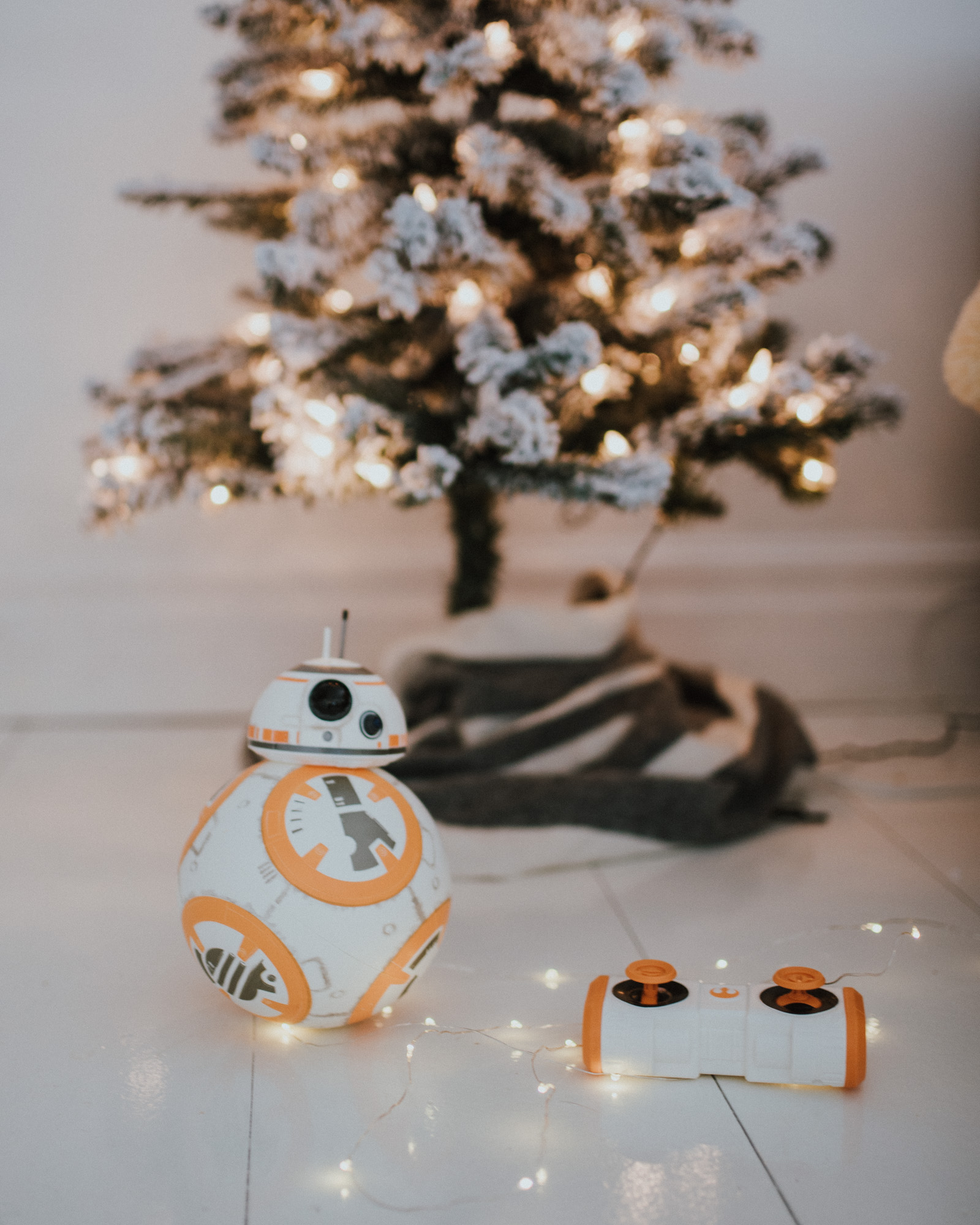 Wild Rosebuds | Gift Guide For Kids 3-6 With Walmart | BB8 Robot
