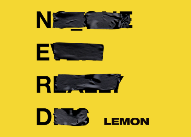 Wild Rosebuds | Friday 10 Things | Lemon by NERD