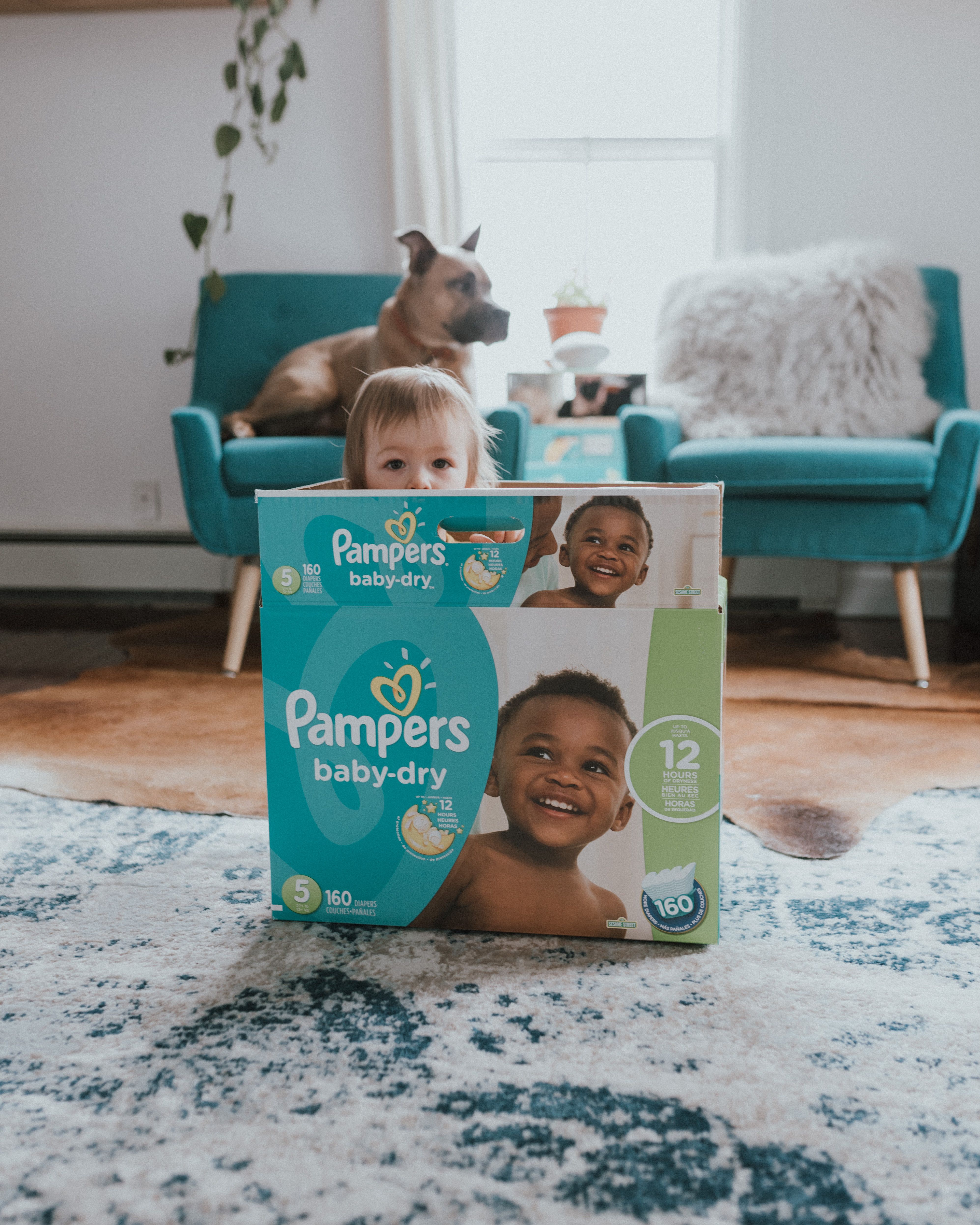 Being Rewarded With Pampers Rewards App