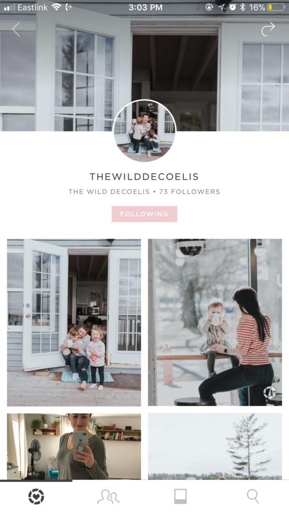 The Wild Decoelis | Follow Us On Liketoknow.it
