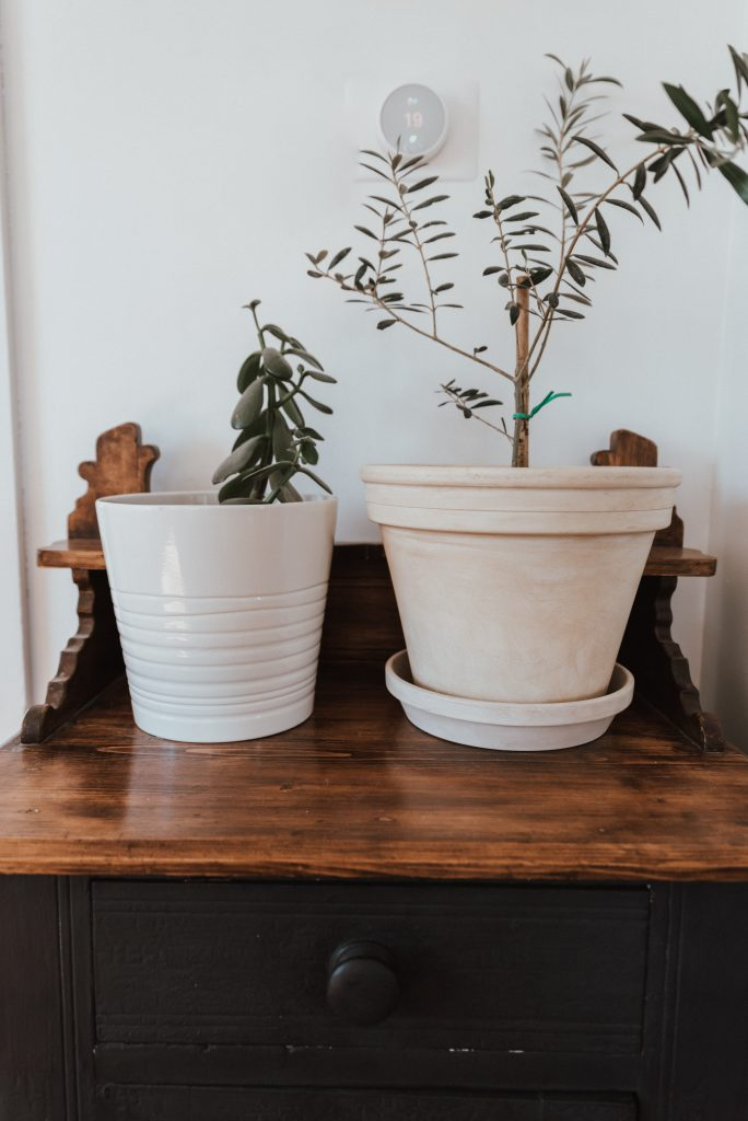 One Room Challenge: Week 2 - Reworking What you have | using ash to faux cement your pots